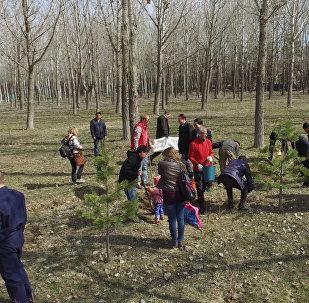 В Бишкеке появилась аллея Российской газеты — кадры с Южных ворот