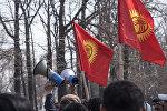 Люди с флагами и громкоговорителями. Архивное фото