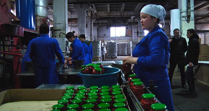 Суткасына 10 тонна томат пастасын чыгарган орнотмо. Чериковдун ойлоп табуулары