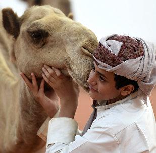 Мальчик с верблюдом в ОАЭ. Архивное фото