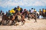 Кыргызстандын көк-бөрүчүлөрү. Архивдик сүрөт