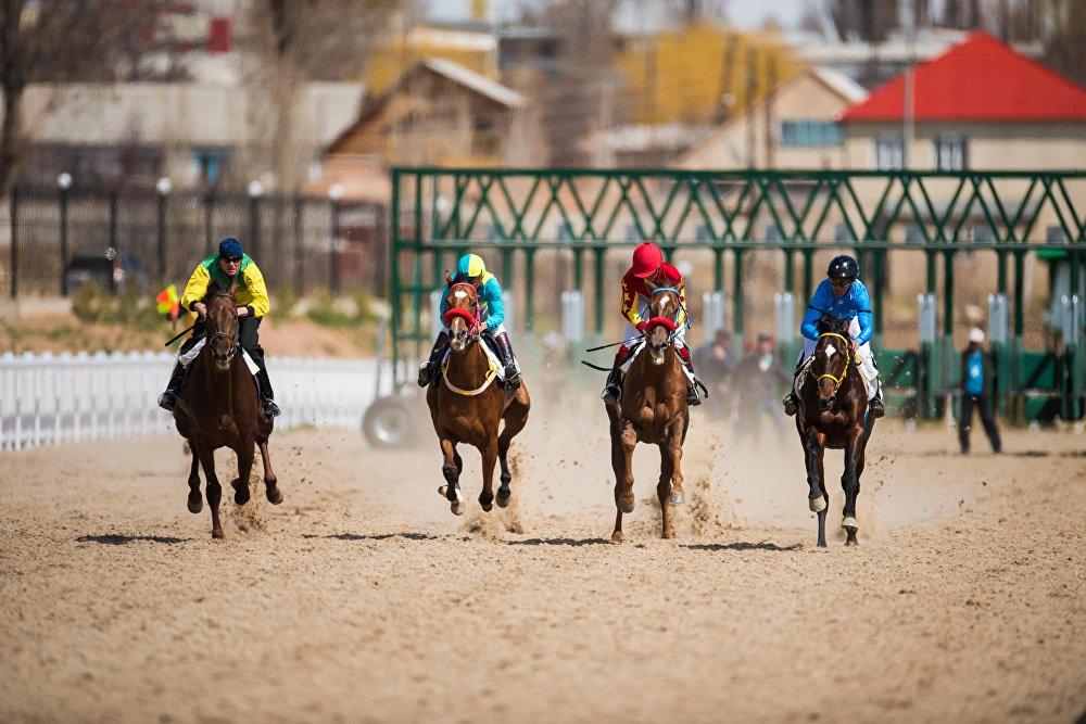 Ат чабышка Кыргызстан менен Казакстандан барган 150гө чукул аргымак катышты