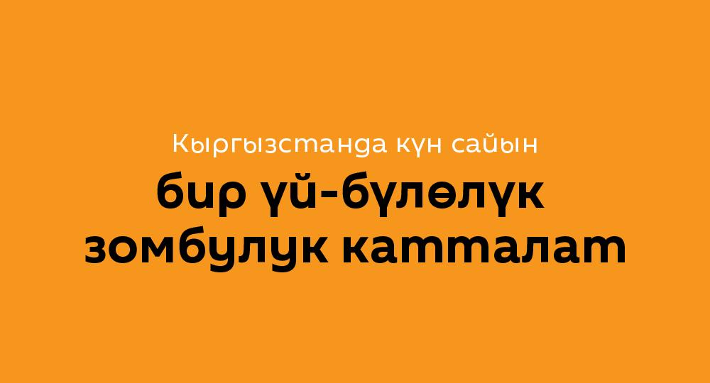 Кыргызстанда күн сайын бир үй-бүлөлүк зомбулук катталат