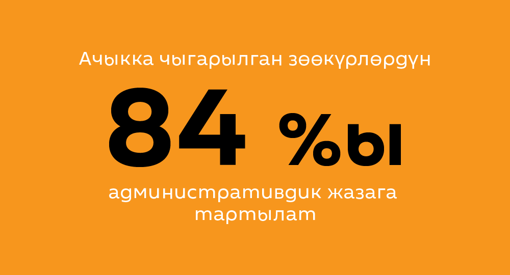 Ачыкка чыгарылган зөөкүрлөрдүн 84%ы административдик жазага тартылат