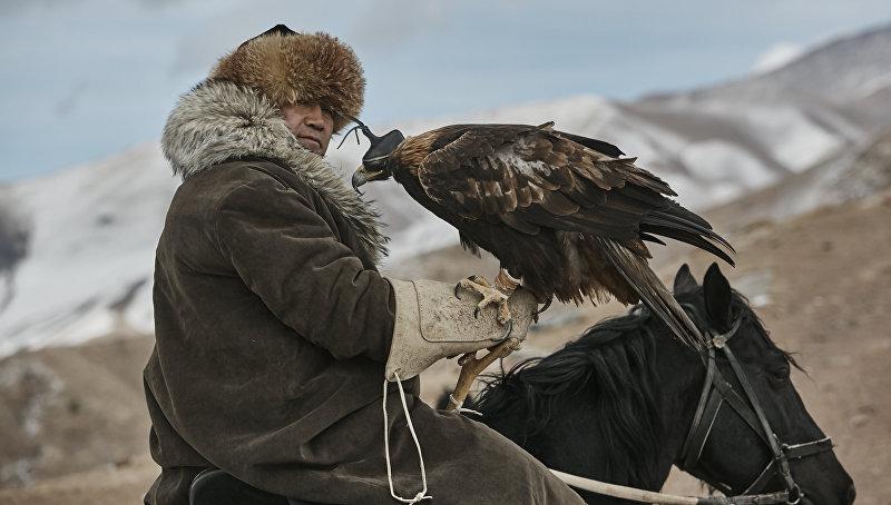 Президент федерации салбуруун Алмаз Акунов с беркутом