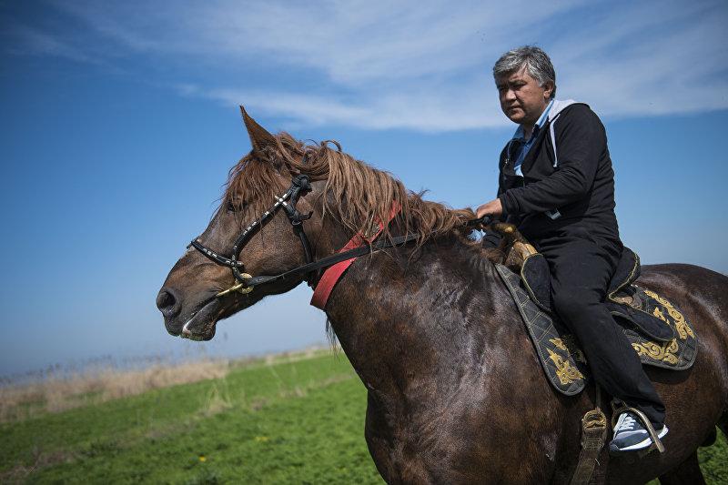 Объездчик Алмаз Колдошев на своем 920-килограммовом скакуне по кличке Барон