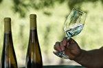 Белое сухое вино. Архивное фото