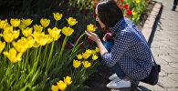 Девушка у тюльпанов в Бишкеке. Архивное фото