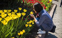 Горожанка у клумбы тюльпанов в Бишкеке