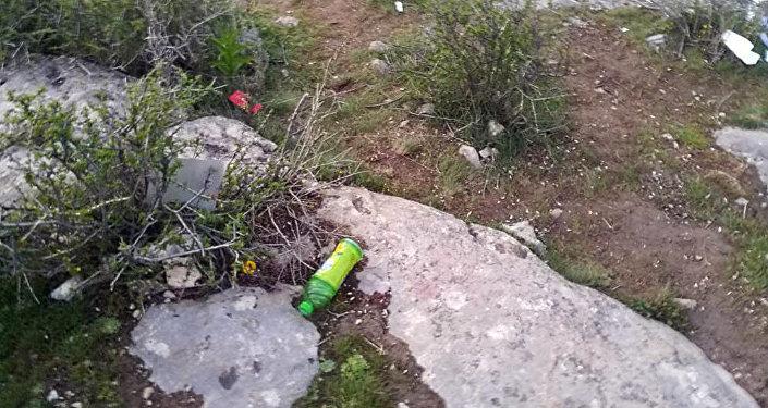 На кадрах, снятых в прошлый четверг, 20 апреля, видно, что рядом с растением валяются пакеты и пластиковые бутылки.