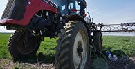 Айыл чарба ишкерманы трактор айдап иштеп жатат. Архив