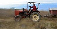 Мужчина на тракторе. Архивное фото