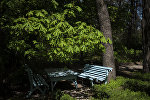Скамейки в ботаническом саду в Бишкеке. Архивное фото
