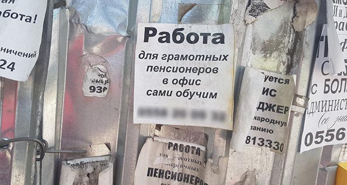 Объявления, которые можно найти почти на каждом столбе или остановке в Бишкеке