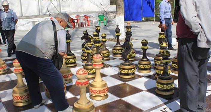Шахматы установлены Институтом развития молодежи для интеллектуального развития горожан.