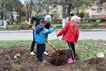 Жители Каракола вместе с детьми посадили саженцы кленов