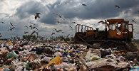Полигон твердых бытовых отходов в Московской области. Архивное фото
