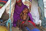 Сахра Муз баласы Ибрахим Али менен Могадишо жакын аймагында. Сомали. Архивдик сүрөт