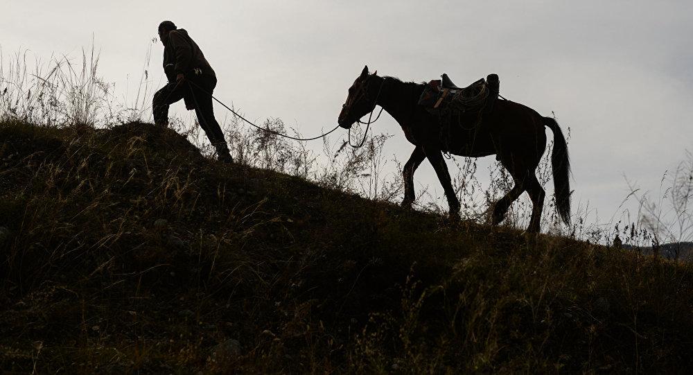 Мужчина ведет лошадь. Архивное фото