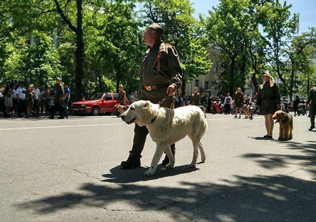 Праздничное мероприятия к 72-годовщине Дня Победы ВОВ в Бишкеке
