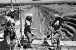Архивные фото строительства Большого Чуйского канала