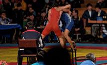 Спортсмены на соревнованиях греко-римской борьбе. Архивное фото