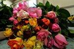 Роза гүлдөрү. Архив