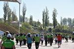 Run the Silk Road эл аралык марафону