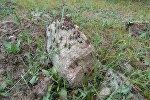 Борьба с саранчой в Чуйской области