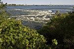 Монреальдагы дарыя. Архивдик сүрөт