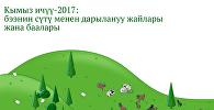 Кымыз ичүү-2017: бээнин сүтү менен дарылануу жайлары жана баалары