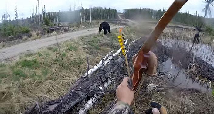 Против медведя с луком и стрелами: кадры нападения зверя на охотника