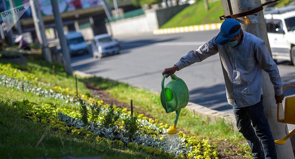 Зеленстрой муниципалитетинин Бишкекте суугаруу иштери. Архивдик сүрөт