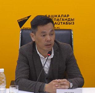 Почему оголилась улица Киевская в Бишкеке — комментарий мэрии