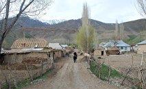 Чоң-Алайдагы айыл. Архивдик сүрөт