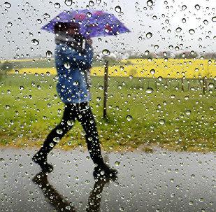 Женщина идет под зонтом во время дождя. Архивное фото