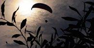 Полет парапланериста. Архивное фото