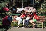 Женщины с зонтми сидят на скамейке во время жаркой погоды. Архивное фото