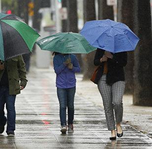 Люди с зонтами во время дождливой погоды. Архивное фото