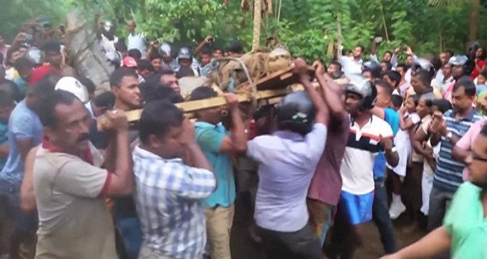 Жители деревни в Шри-Ланке поймали и связали пятиметрового крокодила