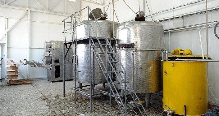 С его запуском решится вопрос сбыта молочной продукции фермерами трех областей — Ошской, Баткенской и Джалал-Абадской. На предприятии получат работу 40 человек.