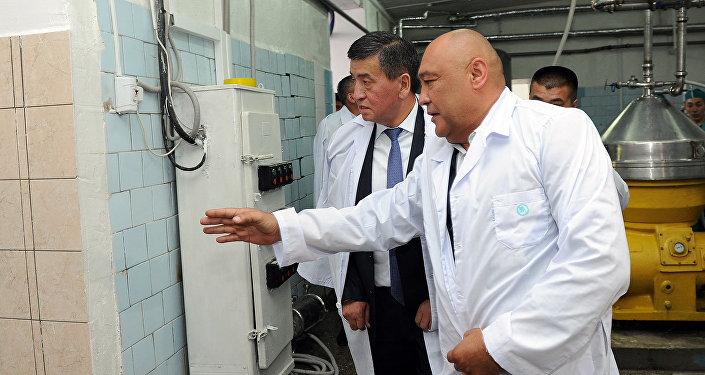 В Оше открылось крупное молокоперерабатывающее предприятие — завод Ош Ак-Сут