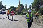 Трассаны кеңейтүү максатында Бишкек — Кара-Балта унаа жолун бойлой өскөн 3000 миң бак кыйылып, 200гө жакын объект бузулат