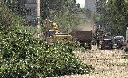 Спасибо! Восток-5 стал бетонной пустыней — о вырубке деревьев в Бишкеке
