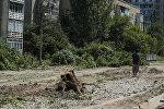 Вырубка деревьев в микрорайоне Восток-5. Архивное фото