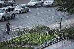 Бишкектеги катуу шамалдын кесепети. Архивдик сүрөт
