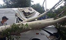 Сильный ветер в Бишкеке
