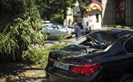 Поврежденный падением дерева автомобиль, из-за сильного ветра в Бишкеке