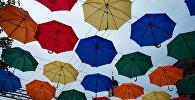 Разноцветные зонтики. Архивное фото