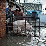 Шорт-лист фотоконкурса имени Андрея Стенина: номинация Главные новости